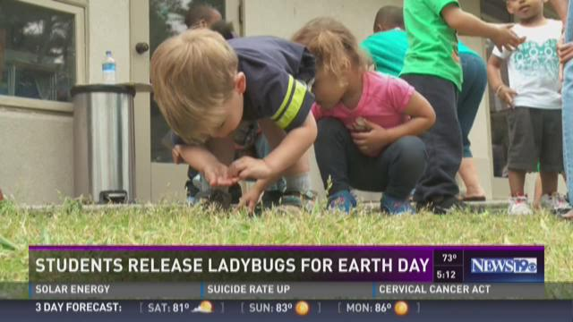 Students Release Ladybugs for Earth Day