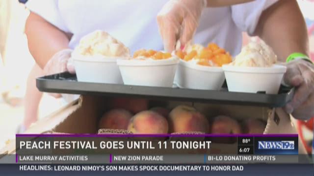 57th Annual Lexington County Peach Festival