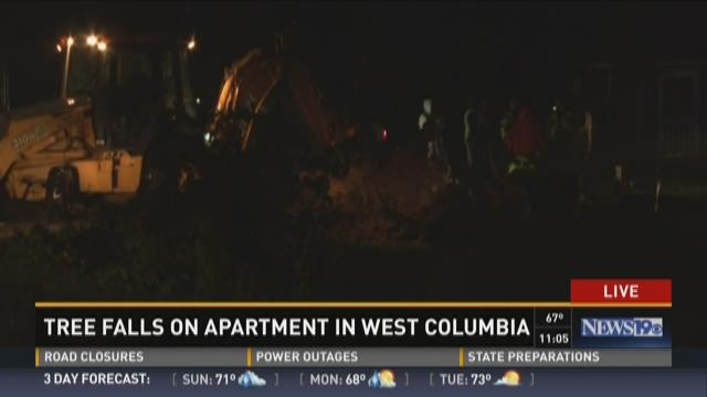 Tree Falls on Apartment in West Columbia